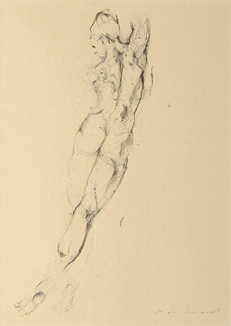 study for dance