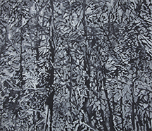 Monochromic forest